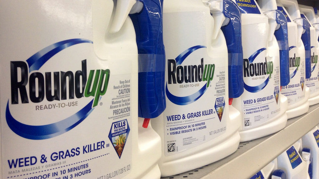Glyphosate weed killers increase cancer risk by 41%, study ...