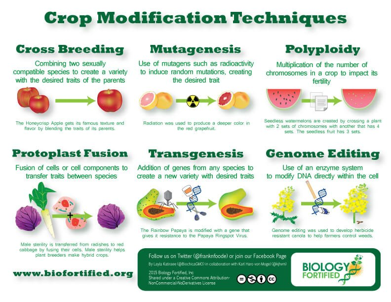 Crop-Modification-Techniques-Horizontal-HQ